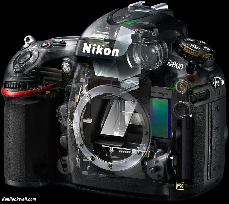 Nikon D800 pod stromečkem