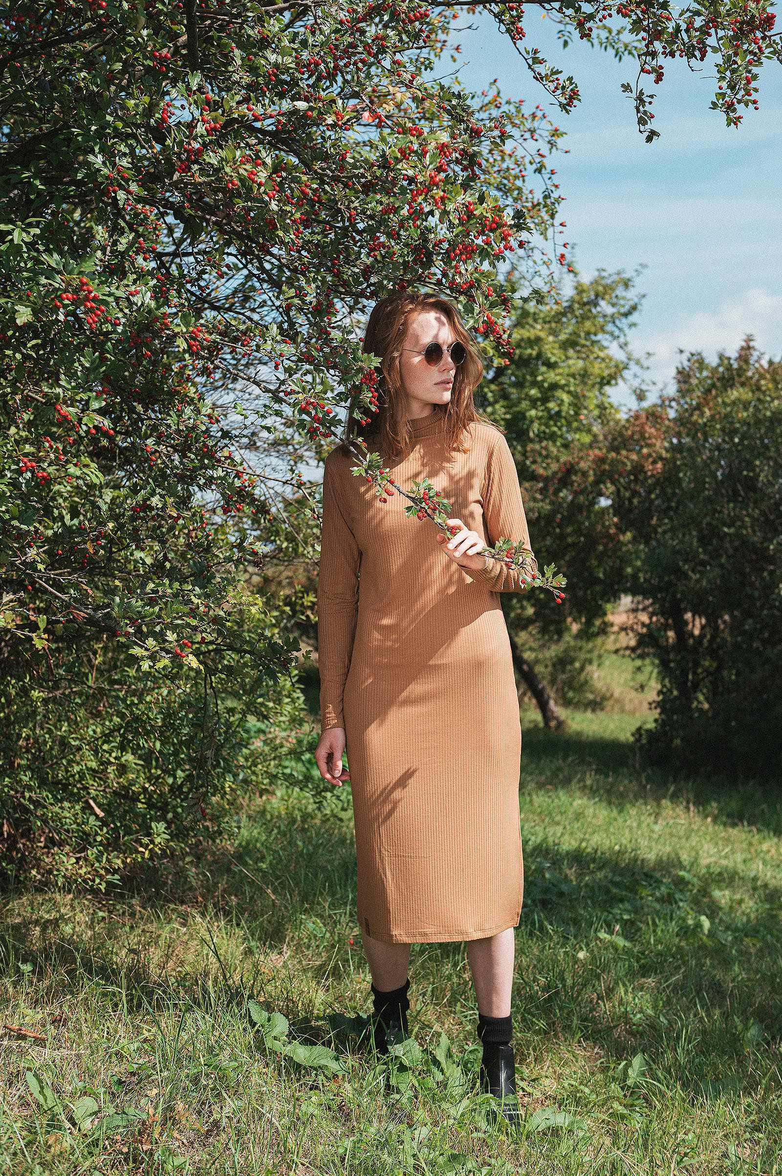Dresses and skirts Penea camel