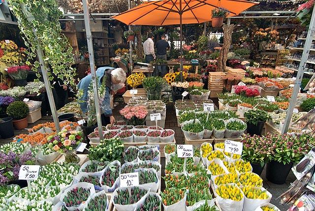 Tulipánové trhy