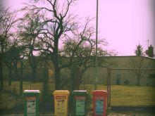 Polaroid memories I.
